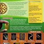 Agen Dinar Emas Gold Bar Dari GoldCrest Pavilion Malaysia (Fakta)