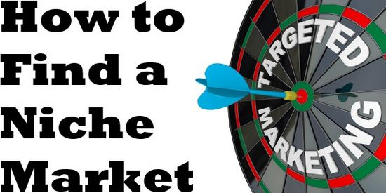 Apa Itu Niche Market dan Hendak Bisnes Apa Di Internet