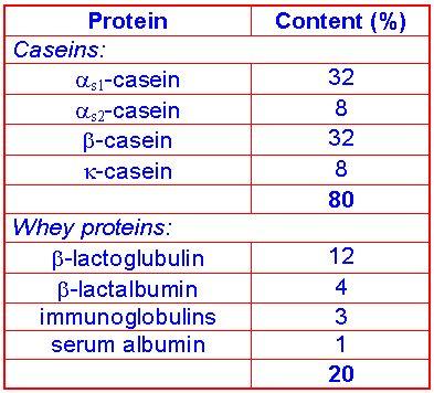 Milk Protein Casein