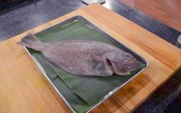 Gambar Sebenar Ikan Sebelah
