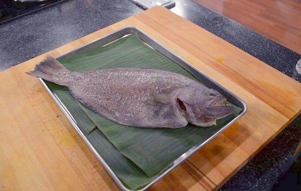 Sole Fish – Ikan Sebelah, Ikan Lidah, Ikan Sisa Nabi
