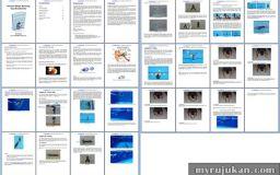 Preview eBook Cara Berenang Bagi Pemula