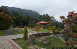 Permandangan dari The Regency Jerai Hill Resort