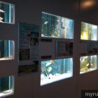 Pusat aquarium batu maung