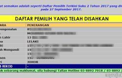 Semak status pengundi melalui internet