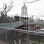 Melaka Bird Park - atas 1