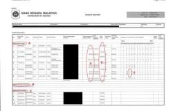 CCRIS Report Malaysia