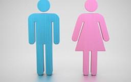 Pengenalan Tentang Maksud Jantina Dan Gender