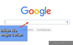 Maksud engin carian Google