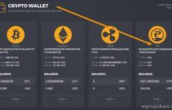 Saya telah membeli Pitis Coin crypto melalui wallet Kodinar