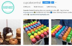 Jalankan perniagaan cupcake di instagram