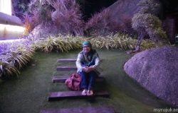 Bergambar kenangan di Penang Avatar Secret Garden