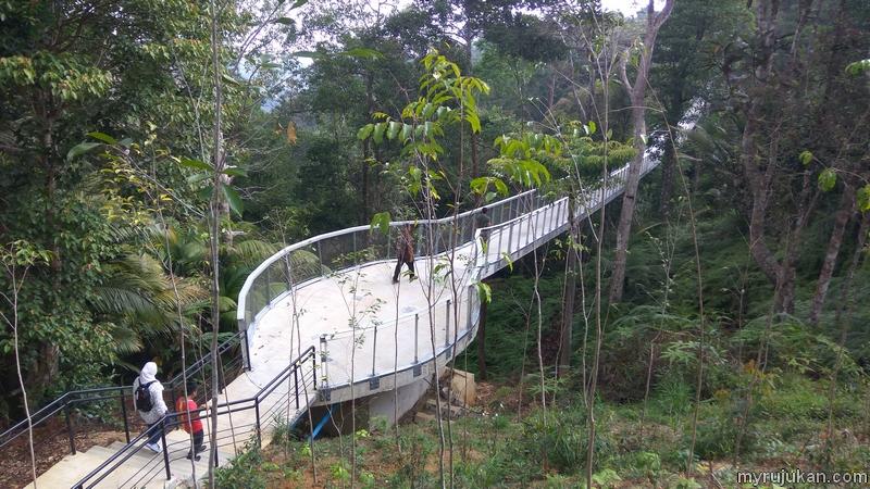 Di Penang Habitat terdapat Canopy Walk untuk anda melihat keindahan hutan hijau