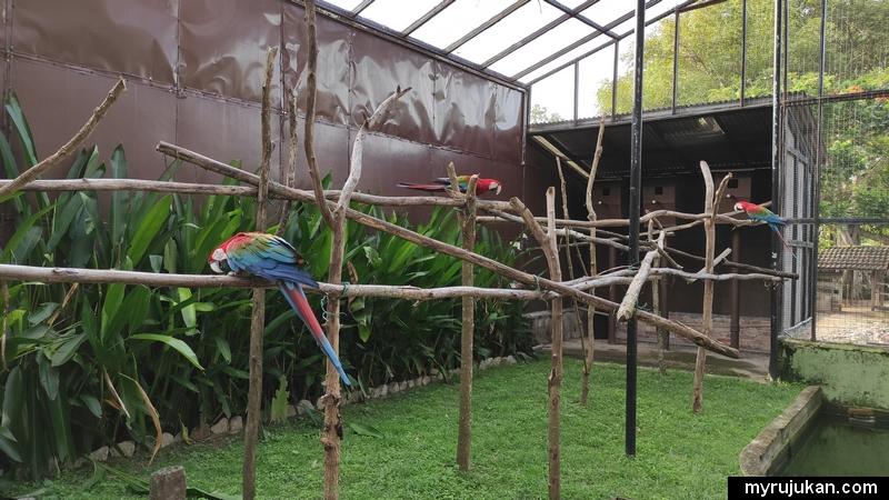 Puas hati pengalaman ke Taman Burung Penang ini